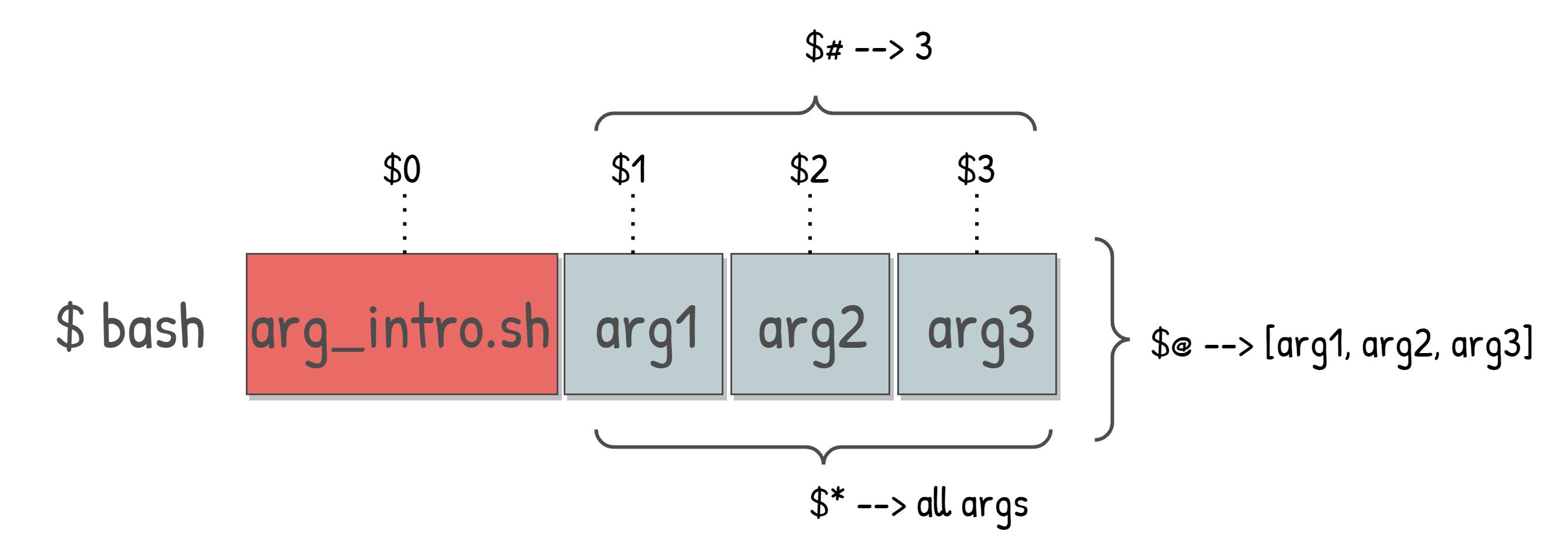 Representation of positional command-line arguments