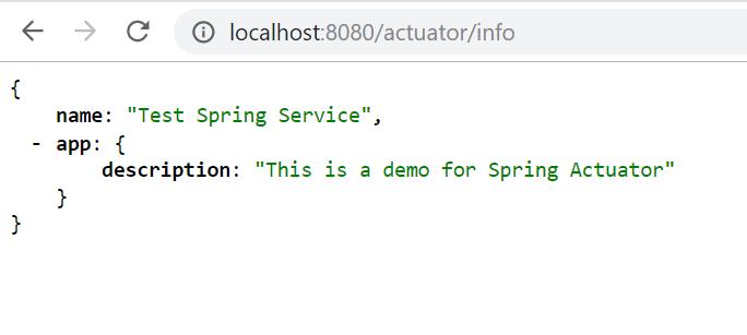 spring boot actuator info